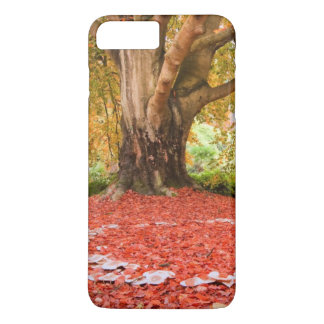 Beautiful Autumn Fall Nature Fairy Ring iPhone 7 Plus Case