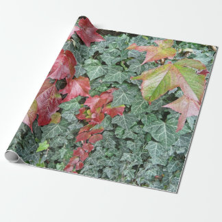 Beautiful autumn fall red green ivy leaves