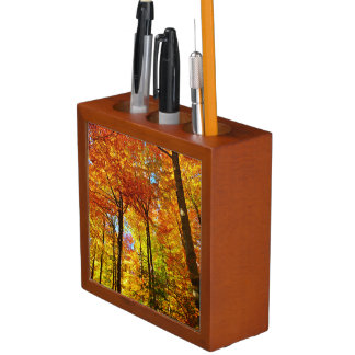 Beautiful Autumn Foliage Pencil/Pen Holder