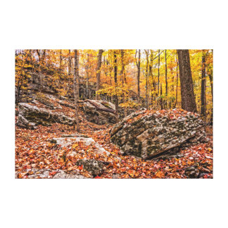 Beautiful Autumn Forest Canvas Print
