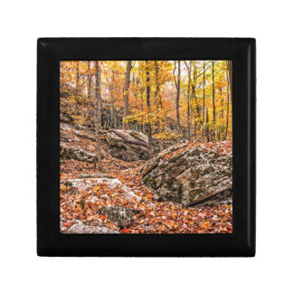 Beautiful Autumn Forest Gift Box