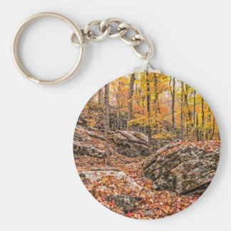 Beautiful Autumn Forest Keychain