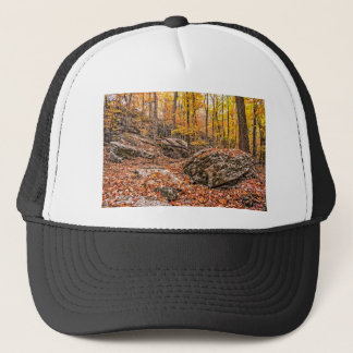 Beautiful Autumn Forest Trucker Hat