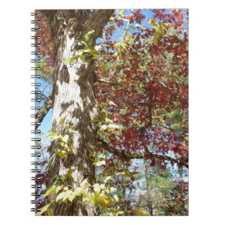 Beautiful Autumn Leaves Spiral Note Book