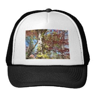 Beautiful Autumn Leaves Trucker Hat