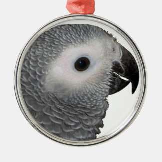 Beautiful Baby African Grey Silver-Colored Round Ornament