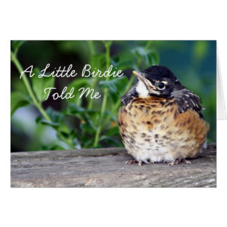 Beautiful Baby Robin Card