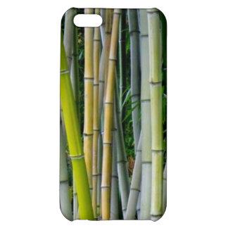 Beautiful bamboo grove iPhone 5C cases