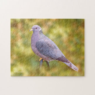 Beautiful Band-Tailed Pigeon in My Backyard Jigsaw Puzzle