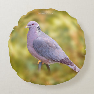 Beautiful Band-Tailed Pigeon in My Backyard Round Pillow
