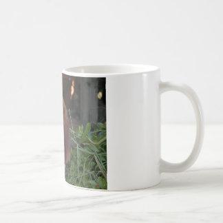 Beautiful Basset Hound Mug