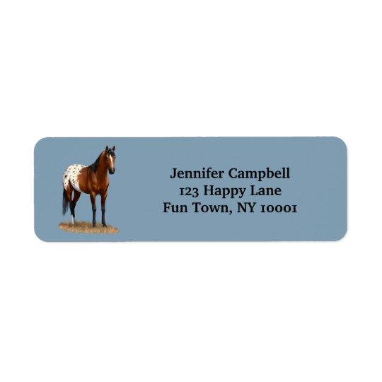 Beautiful Bay Appaloosa Horse