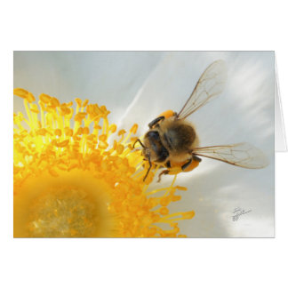 Beautiful Bee Floral Nature Fine Art Photography Card