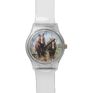 Beautiful belgian harness working horses watch