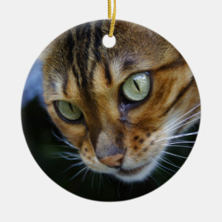 Beautiful Bengal Cat Ceramic Ornament