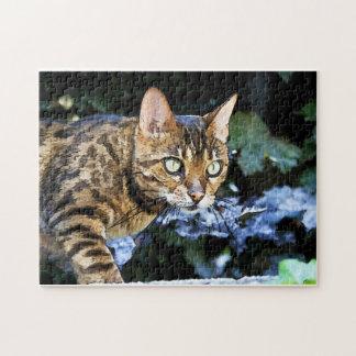 Beautiful Bengal Cat Jigsaw Puzzle