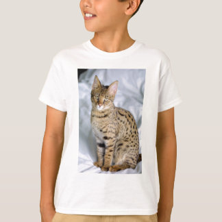 Beautiful Bengal Cute Cat Face T-Shirt