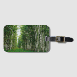 Beautiful Birch Tree Forest Art Luggage Tag