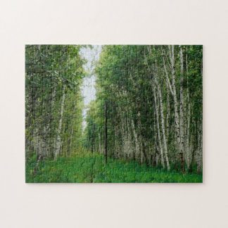 Beautiful Birch Tree Forest Jigsaw Puzzle