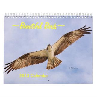 Beautiful Birds 2016 Calendar