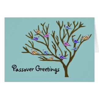 Beautiful birds Passover Card