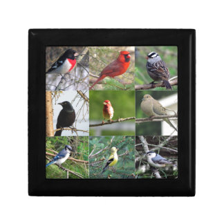 Beautiful Birds Trinket Boxes