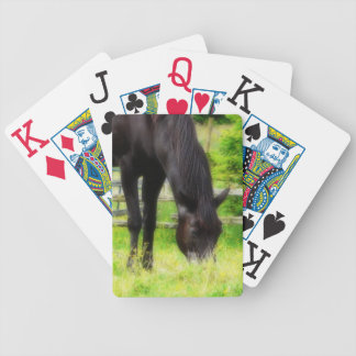 Beautiful Black Horse Grazing in Pasture Bicycle Playing Cards