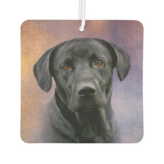 Beautiful Black Labrador Retriever Air Freshener