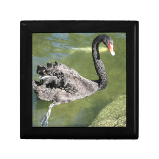 Beautiful Black Swan Jewelry/Gift Box