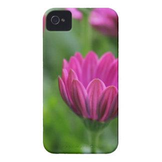 Beautiful Blooms iPhone 4 Case