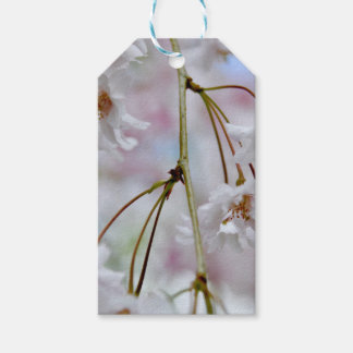Beautiful Blossoms Pack Of Gift Tags