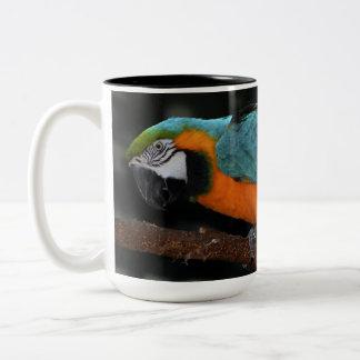 Beautiful Blue and Gold Macaw Two-Tone Coffee Mug