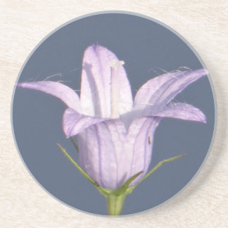 Beautiful blue bell flower drink coaster