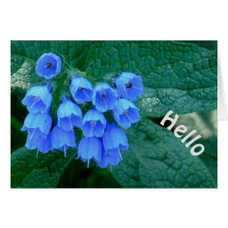 "Beautiful Blue Bell--Shaped Flowers, ""HELLO"" CARD"