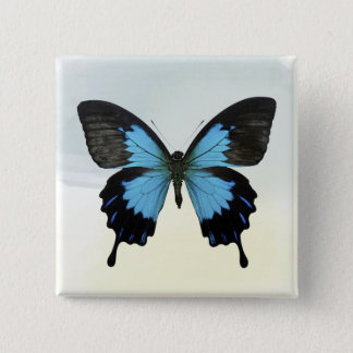 Beautiful Blue Black Butterfly on Watercolor 2 Inch Square Button