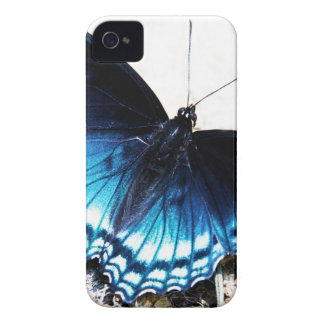 Beautiful Blue Butterfly Case-Mate iPhone 4 Cases