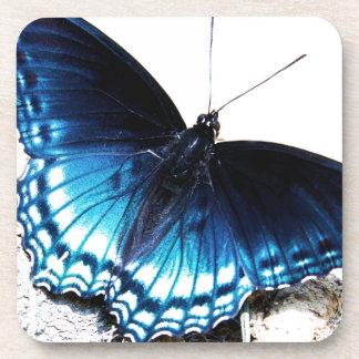 Beautiful Blue Butterfly Coaster