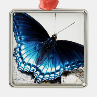 Beautiful Blue Butterfly Metal Ornament