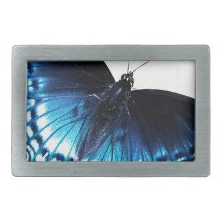 Beautiful Blue Butterfly Rectangular Belt Buckles