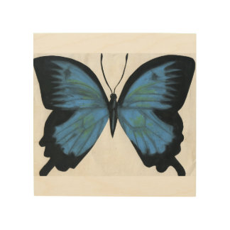 Beautiful Blue Butterfly Wood Print
