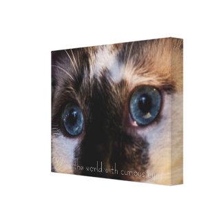 Beautiful blue eyed cat Canvas print