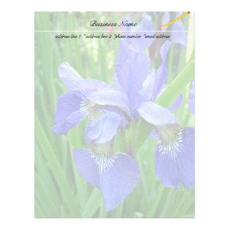 beautiful blue iris flowers letterhead template