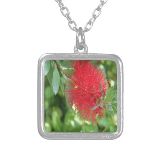 Beautiful Bottle Brush Flower With Garden Backgrou Silver Plated Necklace