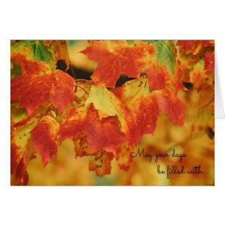 Beautiful Bright Orange Autumn Leaves on Tree Card