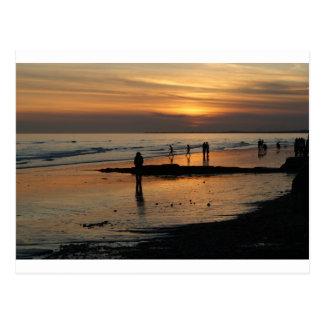 Beautiful Brighton Sunet Beach Postcard