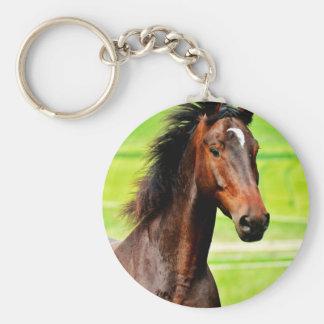 Beautiful Brown Horse Green Grass Basic Round Button Keychain