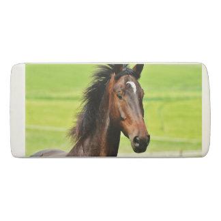Beautiful Brown Horse Green Grass Eraser