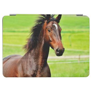 Beautiful Brown Horse Green Grass iPad Air Cover