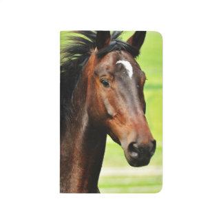 Beautiful Brown Horse Green Grass Journal