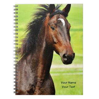 Beautiful Brown Horse Green Grass Spiral Notebooks